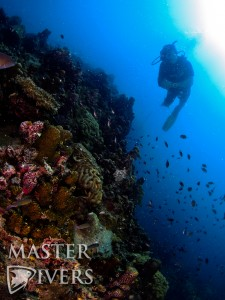 Diver at Red Rock