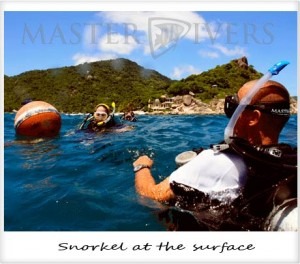 Snorkel in at the surface