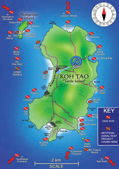 Why fun dive with master divers diving on koh tao master divers - Dive in koh tao ...