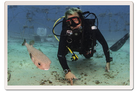 Divemaster Brian with a Pufferfiash at Twins dive site, Koh Tao, Thailand