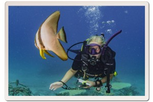 Divemaster Katie with a Batfish at Twins Dive site Koh Tao, Thailand