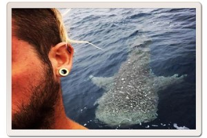 Whale Shark selfie from the Master Divers scuba diving boat