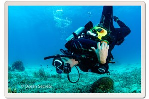 Underwater photographer, Rob Kelly at Koh Tao dive site, Twins