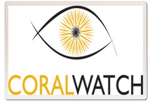 Coral-Watch Framed