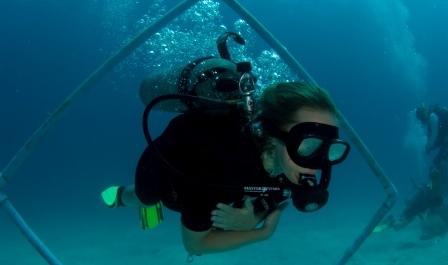 PADI Advanced Open Water Diver Course | Master Divers - Scuba Diving